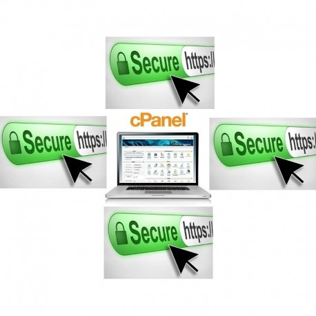 Cpanel Server with 5 https: Private Domain & ( Cpanel Upload Hosting )