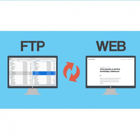 FTP Server  with 1 Private Domain
